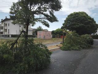 Maltempo di ieri: Per fortuna pochi danni nella nostra città