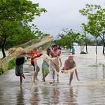Life in Tanguar Haor - VI