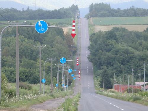 合わせ鏡のように延々と歩行者優先標識が続く道、シャフトっぽい