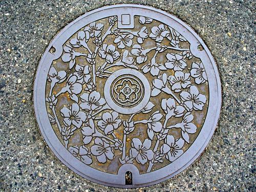 Kasugai Aichi, manhole cover (愛知県春日井市のマンホール)