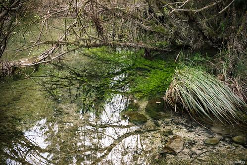 underwatergreen