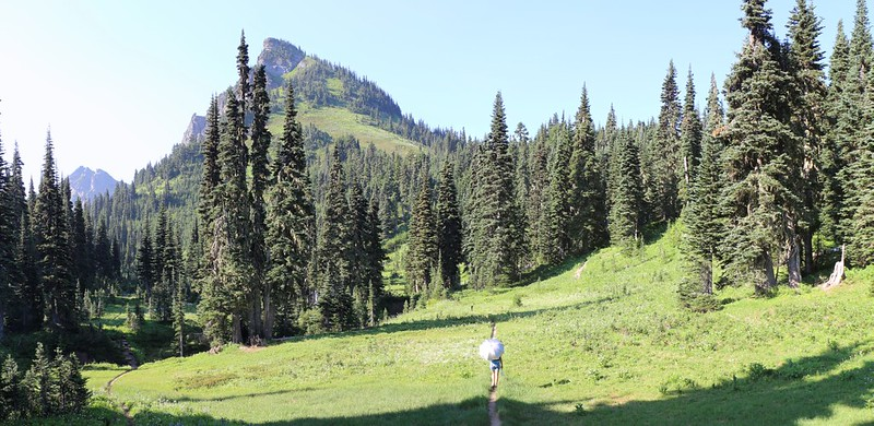 We begin hiking across the meadow toward Liberty cap from Buck Creek Pass