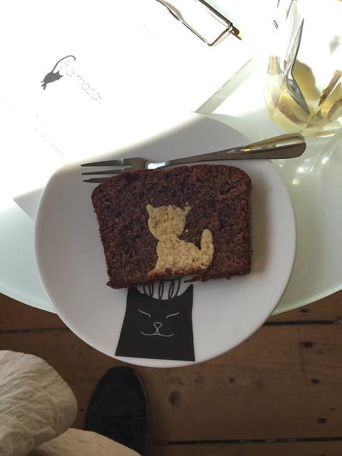 catcafé Balthazar Nijmegen kattencafé cat café tea cake