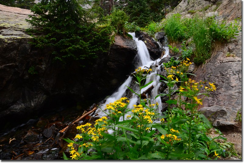 Cascade along the trail (8)