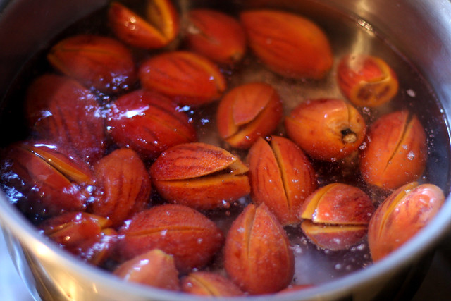 chutney de tomate de arbol  (3)