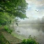 Reservoir in Fog