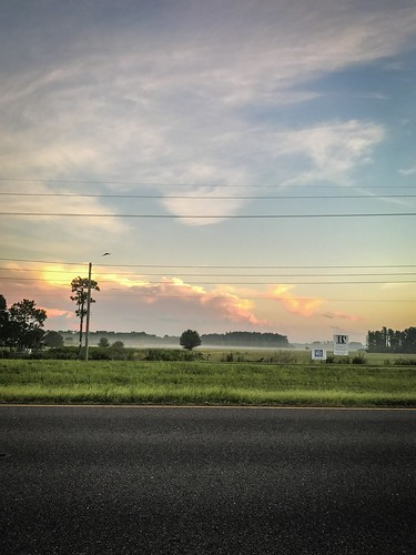 sunruse sunrise commute sunrisecommute cloud nature clouds field green grass road fog sign powerlines