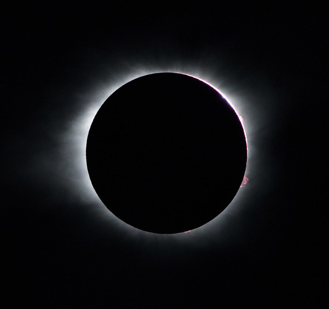 Totality.4278, Canon EOS 7D MARK II, Sigma 150-600mm f/5-6.3 DG OS HSM | C