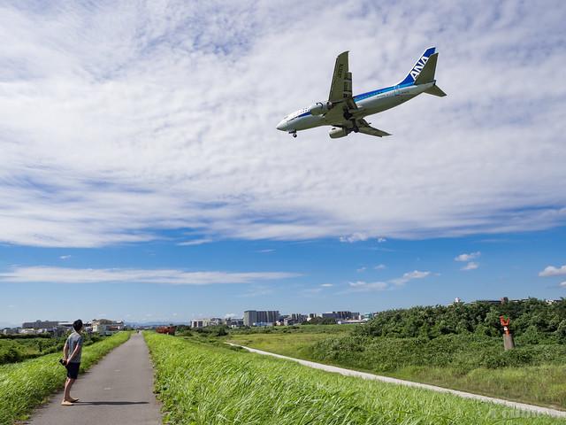 Itami Airport 2017.8.3 (26) JA357K / ANA WINGS' B737-500