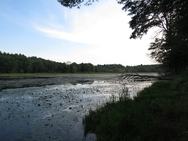 Fitzgerald Lake Conservation Area