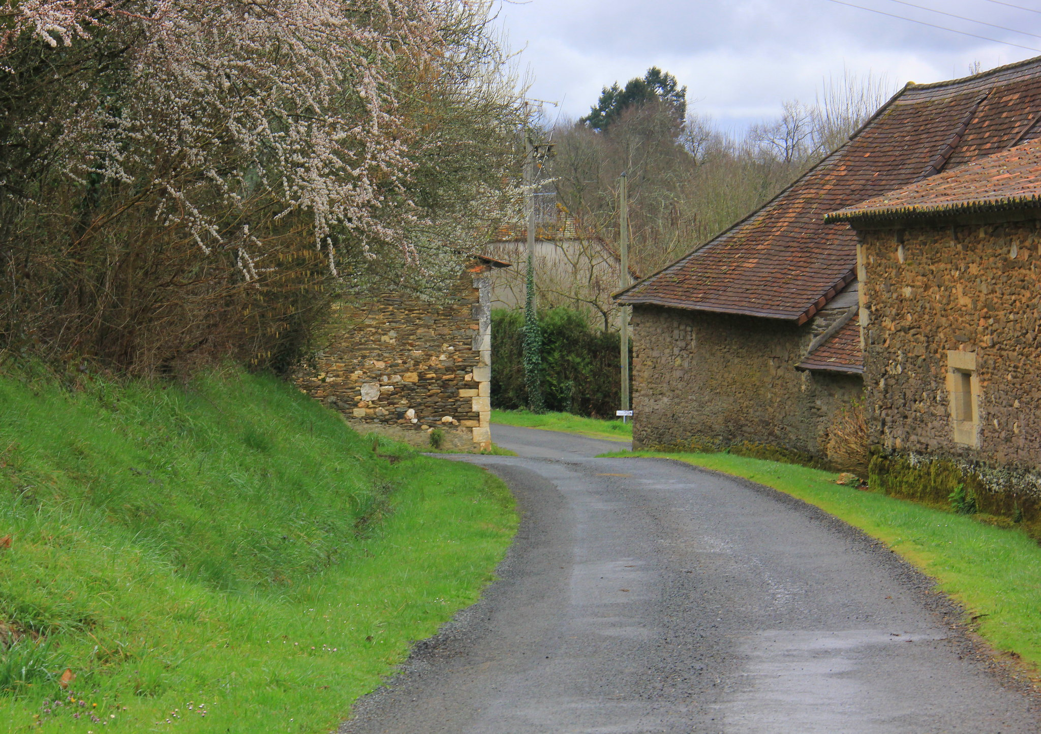 spring in dordogne makes the greenery fresh and beautiful