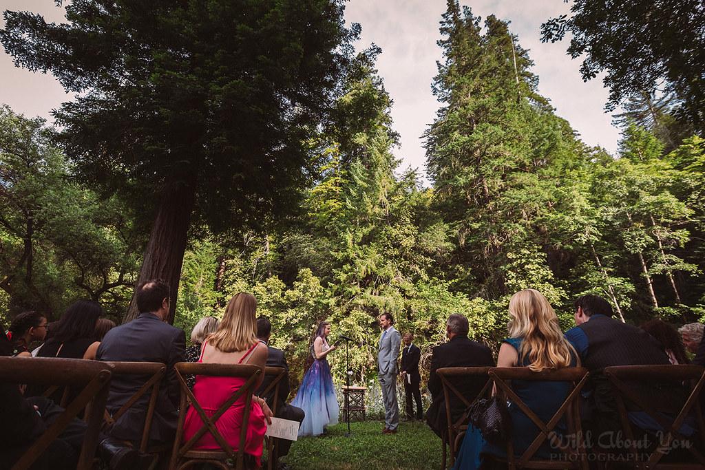 redwoodwedding053