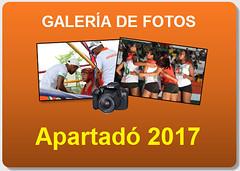 Icono galería final departamental B Apartadó 2017