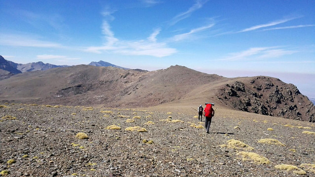 Integral Sierra Nevada 2017