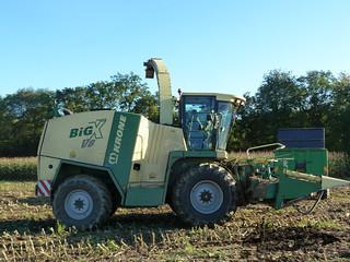 Big X v8-114