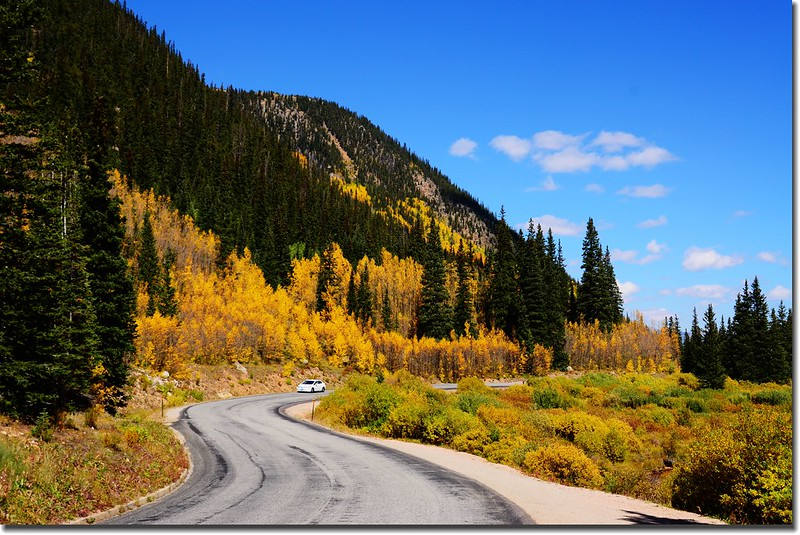 Fall colors, Guanella Pass, Colorado (17)