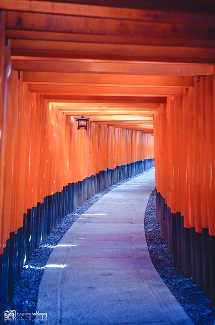 十年,京都四季 | 卷一 | 啟程 | 23