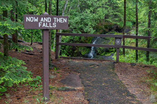 Now and Then Falls Sign