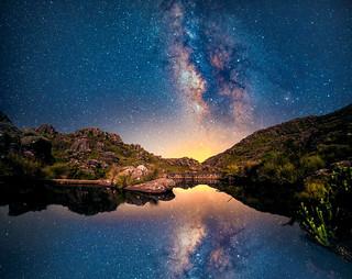 The Reflected Galaxy II
