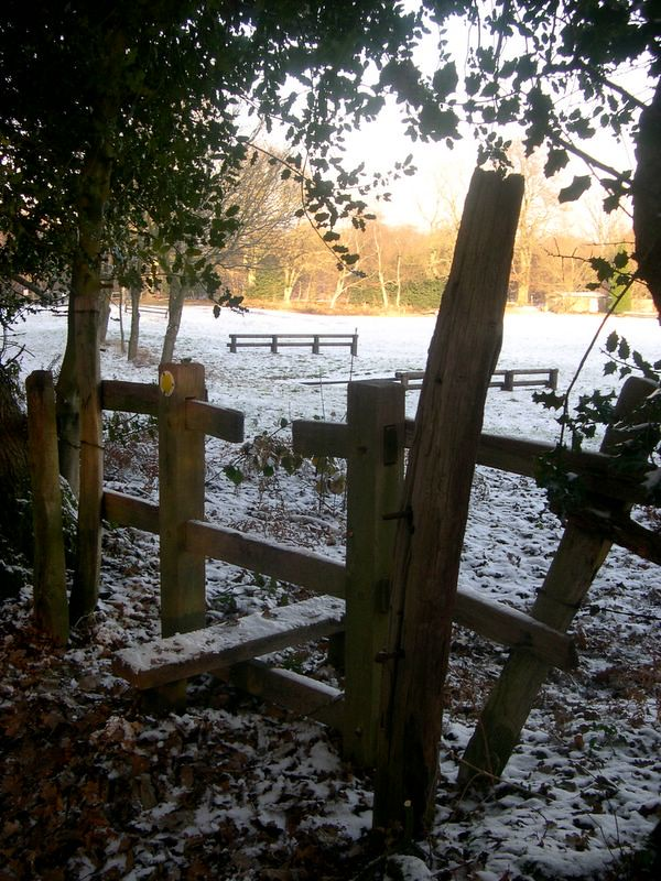 Greensand Way in Winter