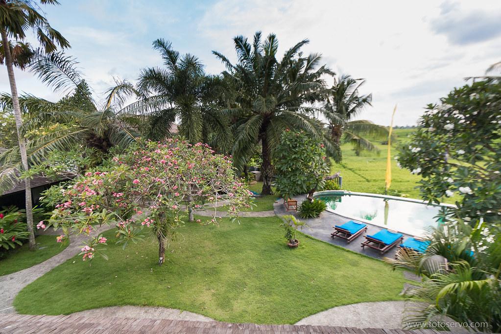 Padma Villa