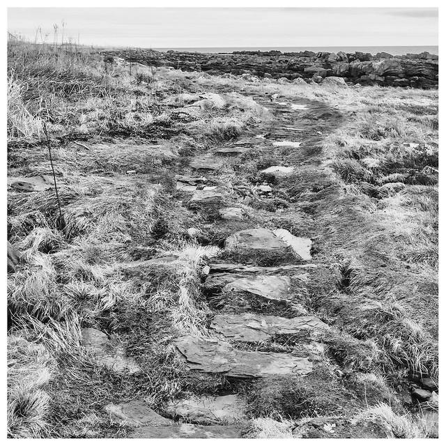 Stepping stones, Caiplie, Fujifilm X-Pro1, XF27mmF2.8