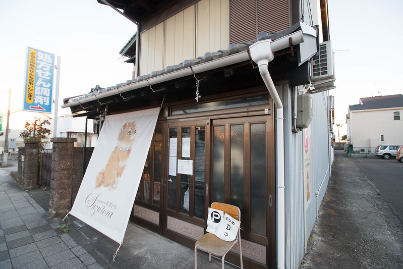 20161210-浜石岳-0476.jpg