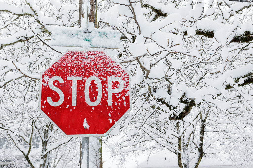 A stop sign in front of snow-covered trees