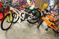 Bike SNOW tour: jak vybrat dětské kolo
