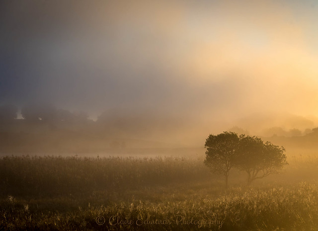 Misty sunrise, Canon EOS 6D, Canon EF 24-70mm f/4L IS USM