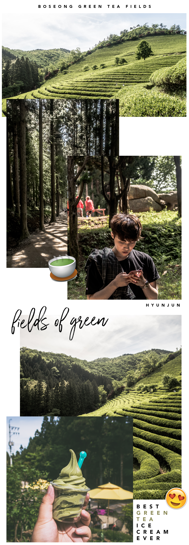 Boseong_Yulpo_Mokpo_Korea Solo Trip Travel 2017