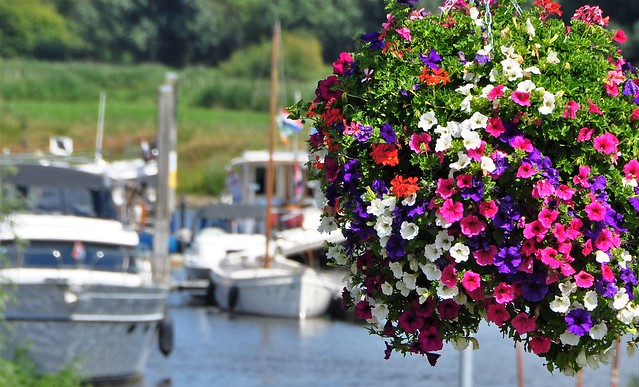 Kleuren bij de haven / Colors at the harbor........on Explore