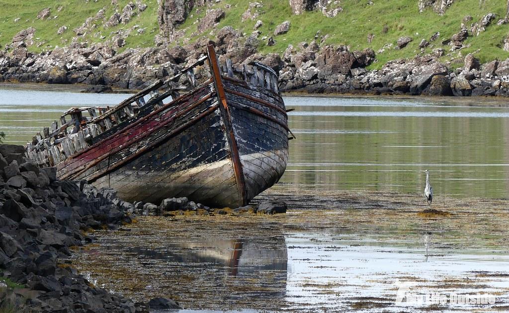 P1100502 - Croig, Isle of Mull