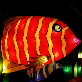 Fish from Chinese new year in Sydney