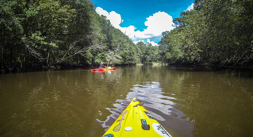 2017-08-12 Lynches River with Lowcountry Unfiltered