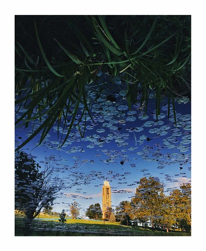 #exploreKU in the reflections
