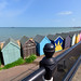 Herne Bay, Kent  -  (Selected by GETTY IMAGES)