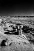 BistiBadlands_infrared-724 by wanderingYew2 (thanks for 3M+ views!)