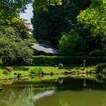 Nitobe Garden at University of British Columbia. Photo: Sarah Fedorchuk