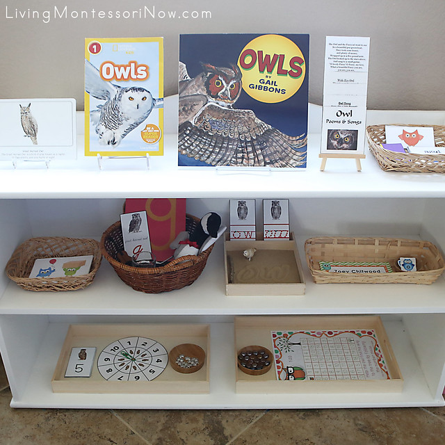 Montessori Shelves with Owl-Themed Activities
