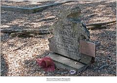 Redwood Headstone 2