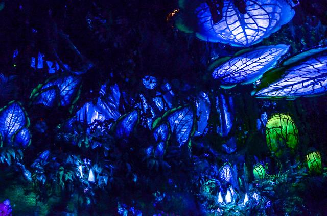 NRJ Pandora AK blue