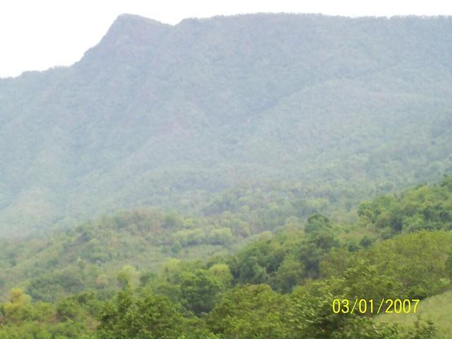 21st Bora to Pedaguruv (Andhra Pradesh) June,2008