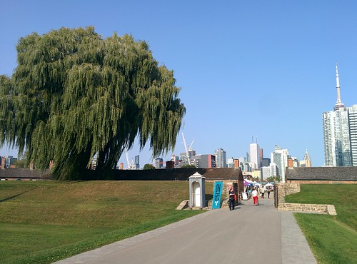 At Fort York underneath the city (10) #toronto #fortyork #skyline #tower #gardinerexpressway