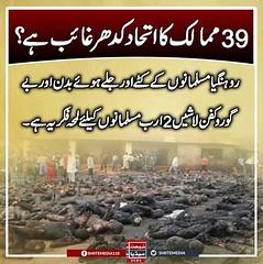 39 ممالک کا اتحاد کدھر غائب ہے؟ روہنگیا مسلمانوں کے کٹے اور جلے ہوئے بدن اور بے گوروکفن لاشیں 2 ارب مسلمانوں کیلئے لمحہ فکریہ ہے۔