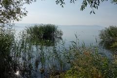 Północna część Jeziora Ochrydzkiego