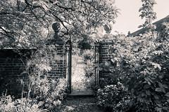Osterley House & Park -10 19092017-Edit.jpg