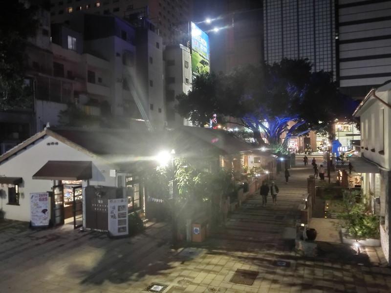 香港旅人租車環島遊記-台南-藍晒圖-17度C的黑夜 (12)
