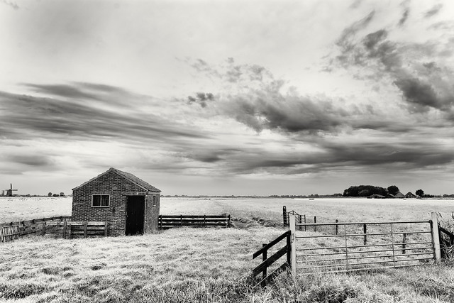 Shed In A High Key Landscape
