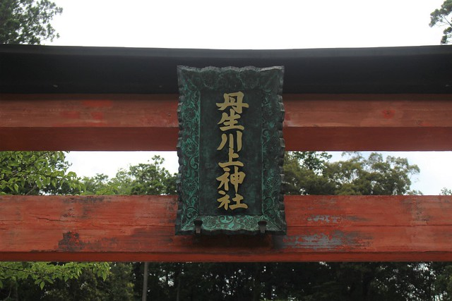 niukawakamijinja_nakasya026